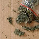 marijuana-arrest-colordo
